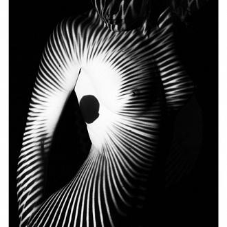 glamorous shadows (2013)