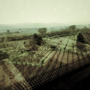 un lunghissimo viaggio (2009)